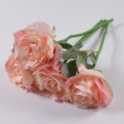 Rose Santana, 31 cm, verschiedene Farben