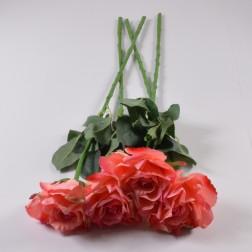 Rose Santana, 67 cm