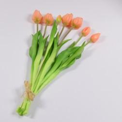 Tulpenbund Irma x 7, verschiedene Farben