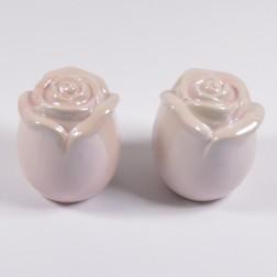 Rose Sina, 12 cm, verschiedene Farben