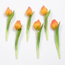 Tulpe Tanja, 19 cm, verschiedene Farben