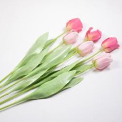Tulpe Melina 68 cm sort., verschiedene Farben