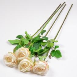 Rose Alessia, 66 cm cream