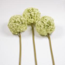Allium Prio beflockt