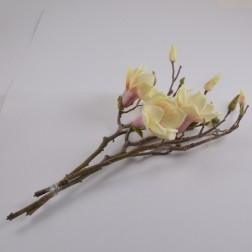 Magnolia Pick Larissa, verschiedene Farben
