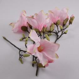 Magnolia Pick Rannino, verschiedene Farben