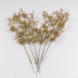Amania-Zweig, 44 cm