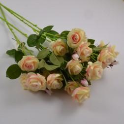 Rose Monique, 68 cm, verschiedene Farben