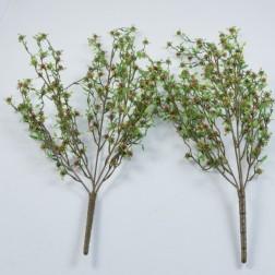 Blütenbusch