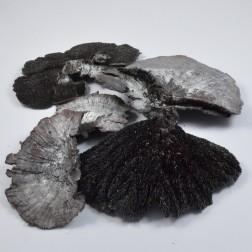 Baumschwamm schwarz/silber