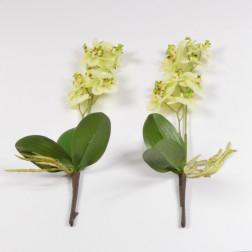 Orchidee Meri, 40 cm, verschiedene Farben