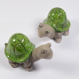 Schildkröte grün sort.