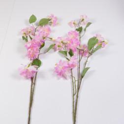 Fuchsie, 90 cm cream/rosa