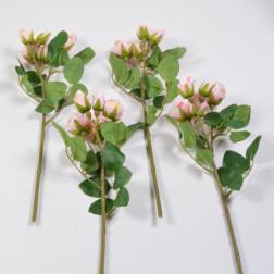 Rose Marina, 39 cm, verschiedene Farben