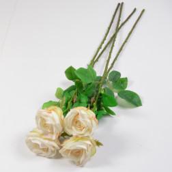 Rose Alessia 66 cm, creme/rosa