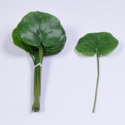 Galaxblatt, 10 cm gruen