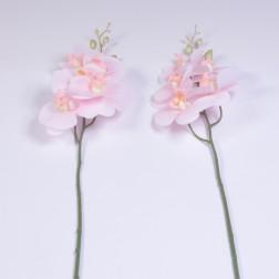 Orchidee Tanja, 83 cm, rosa
