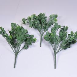 Eucalyptusbusch Diolo, 40 cm, gruen