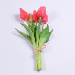 Tulpenbund Aida, verschiedene Farben