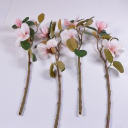 Magnolia Japanese, 51 cm, verschiedene Farben