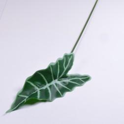 Alocasiablatt, 60 cm, grün