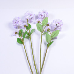 Hydrangea Melina, 55 cm, lavendel
