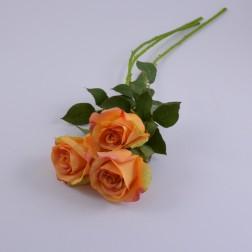 Rose Naomi, verschiedene Farben + verschieden Größen